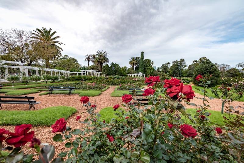 Парк El Rosedal розовый на Bosques de Палермо - Буэносе-Айрес, Аргентине стоковые изображения