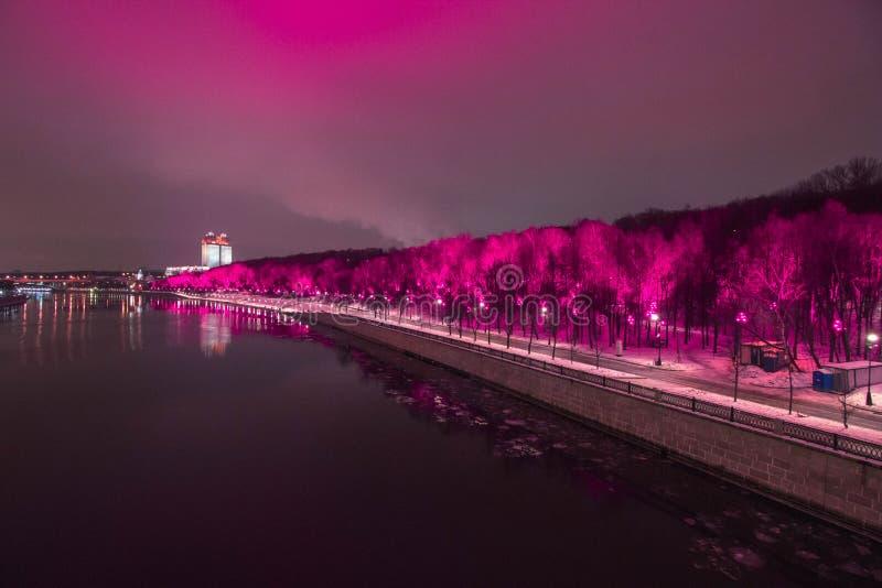 Парк Gorky в пинке в фиолетовых светах стоковое фото