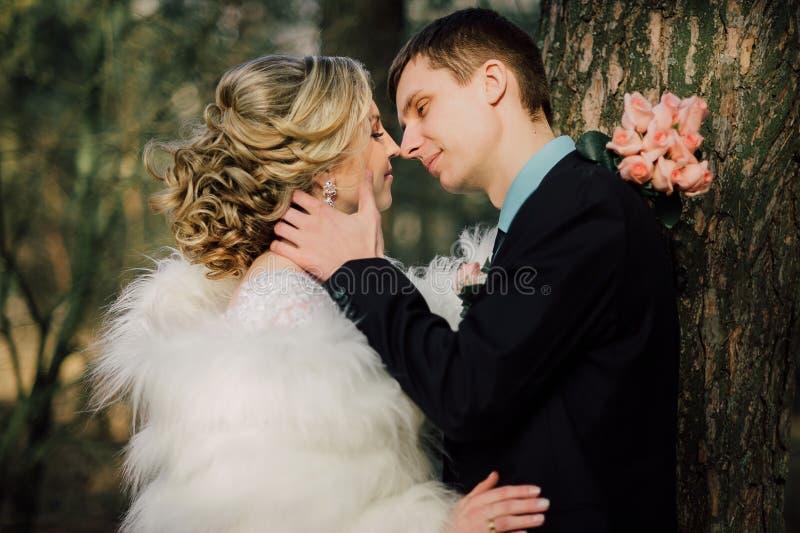 парк groom невесты целуя жених и невеста новобрачных пар на свадьбе в лесе зеленого цвета природы целует портрет фото стоковое фото