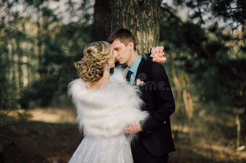 парк groom невесты целуя жених и невеста новобрачных пар на свадьбе в лесе зеленого цвета природы целует портрет фото стоковые фото