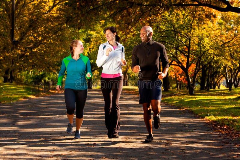 парк jog падения стоковое фото rf