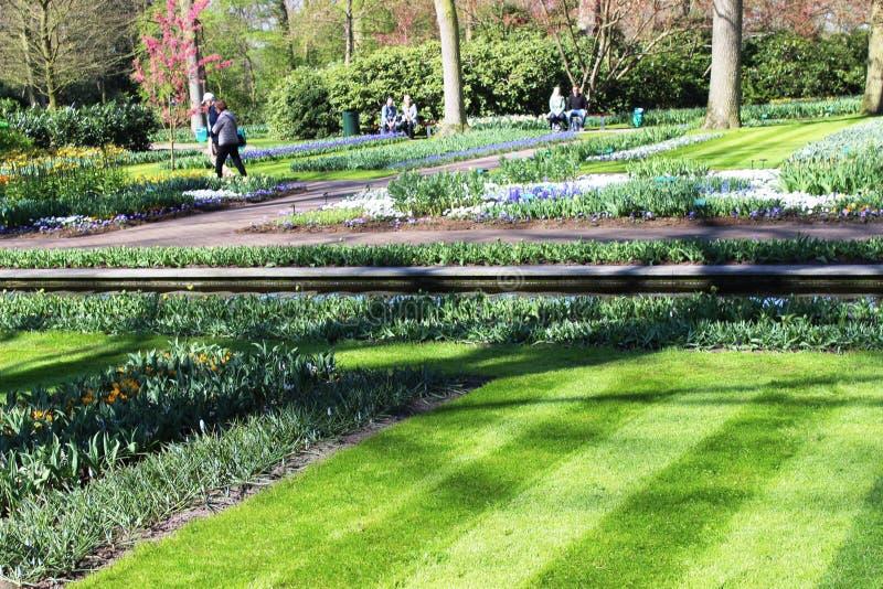 Парк Keukenhof в Нидерландах стоковые изображения rf