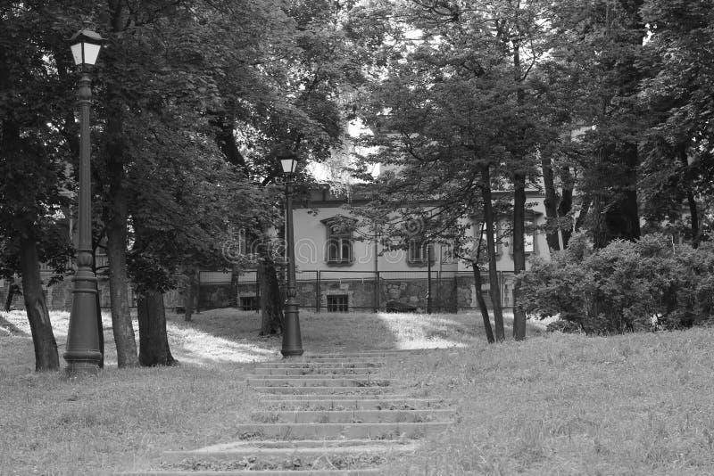 Парк Loshica, Минск стоковое изображение rf
