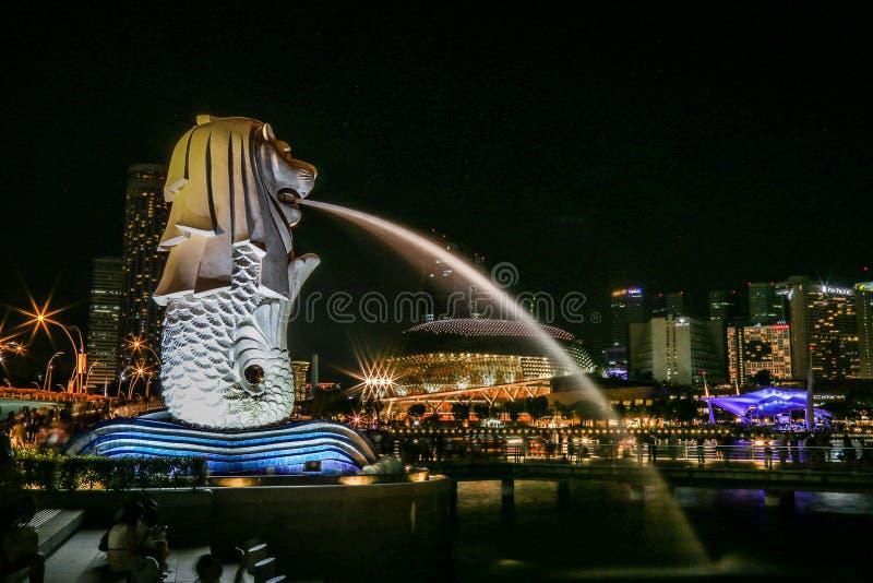 Парк Merlion на ноче с светом города самый лучший ориентир ориентир на ноче стоковые фотографии rf