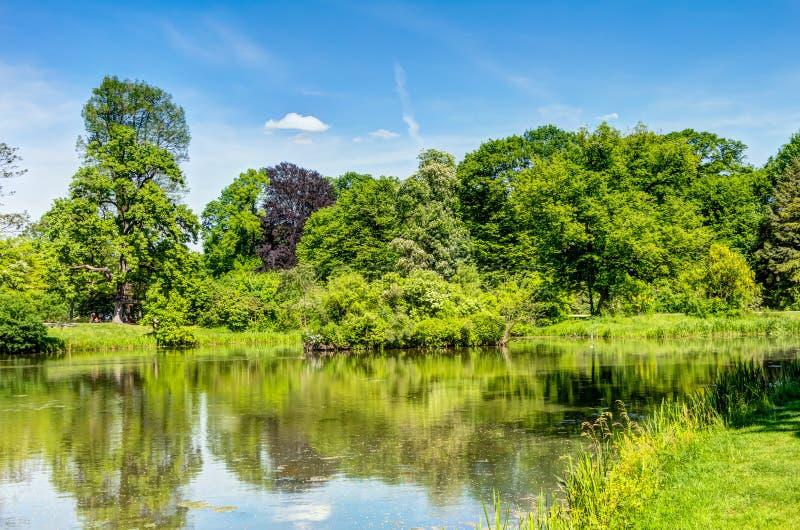 Парк Muskau в верхнем Lusatia стоковое фото