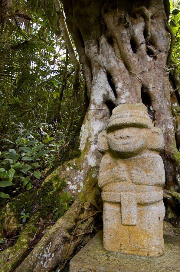 парк san Колумбии agustin archaelogical стоковое изображение rf