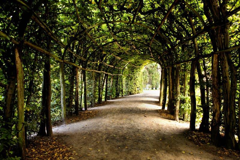 Парк Sanssouci в Потсдаме стоковое фото rf
