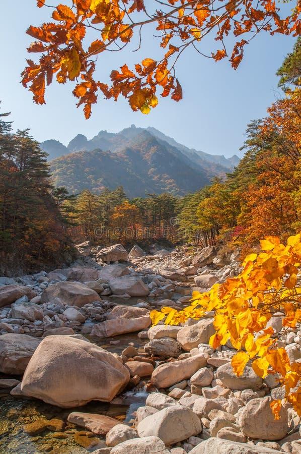 Парк Seoraksan стоковое фото rf