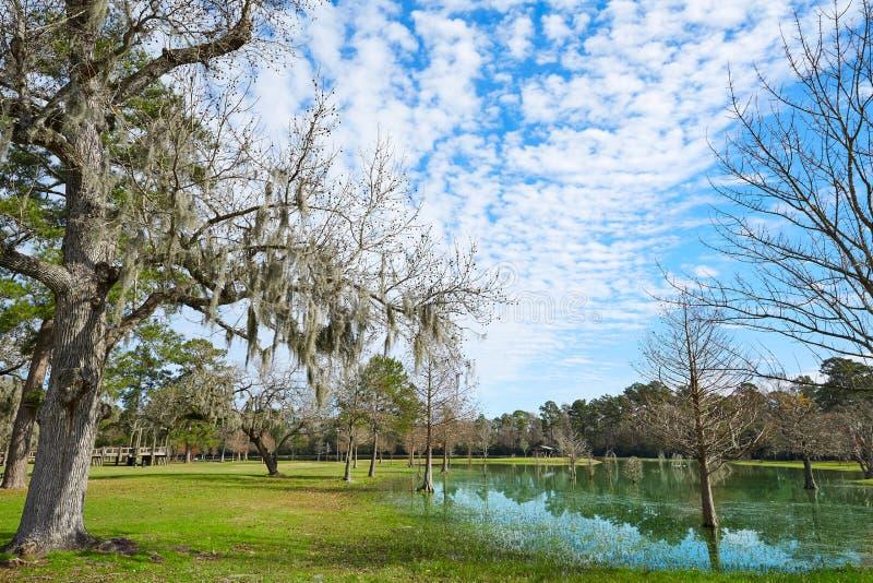 Парк Tomball Берроуза в Хьюстоне Техасе стоковые фото