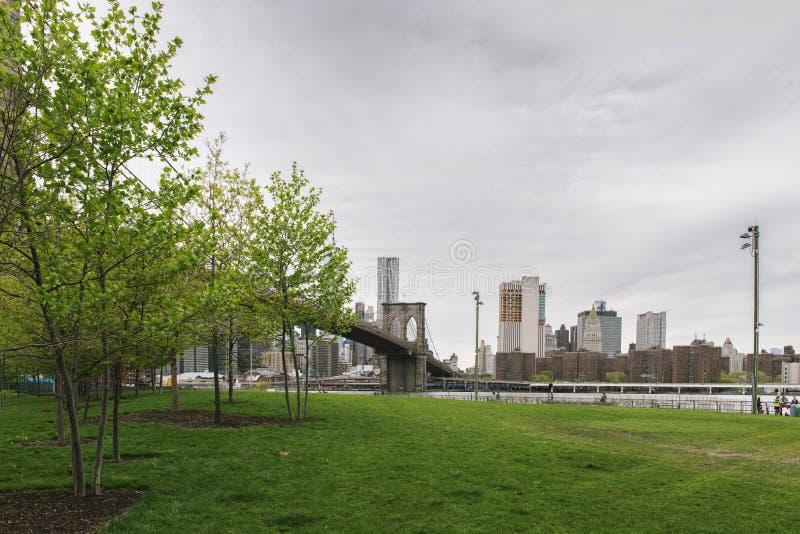 парк york города brooklyn моста новый стоковые изображения rf
