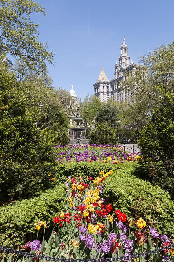 парк york здание муниципалитет новый стоковые изображения rf
