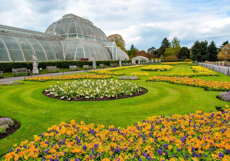Парник в садах Kew ботанических, Лондон, Великобритания стоковое фото rf