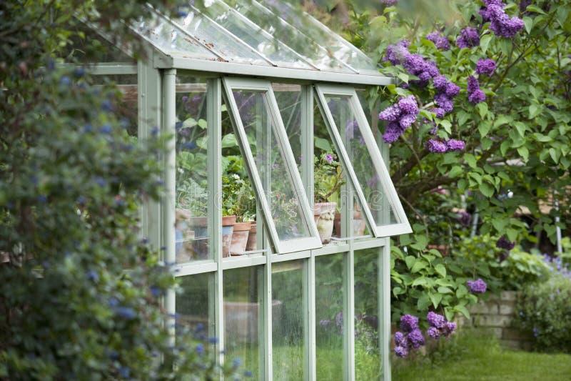 Парник в саде за домом стоковые фотографии rf