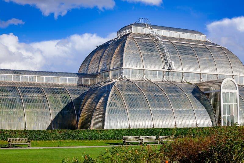 Парник дома ладони в садах юго-западном Лондоне Англии Великобритании Kew стоковые изображения rf