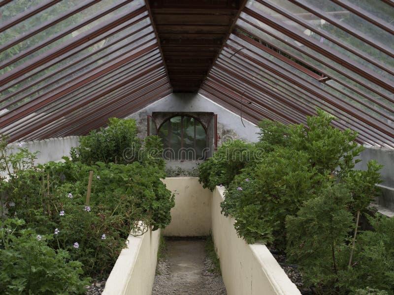 Парник сада Bambouseraie стоковое фото