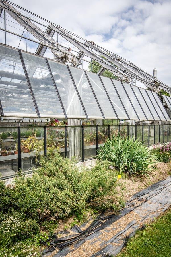 Download парник стоковое фото. изображение насчитывающей glasshouse - 41654912