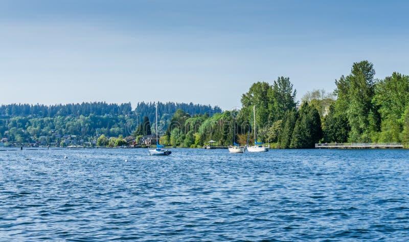 Парусники на озере стоковая фотография
