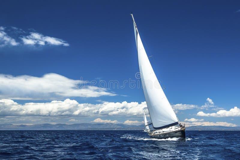 Парусники участвуют в регате плавания Строки роскошных яхт на доке Марины стоковое фото rf