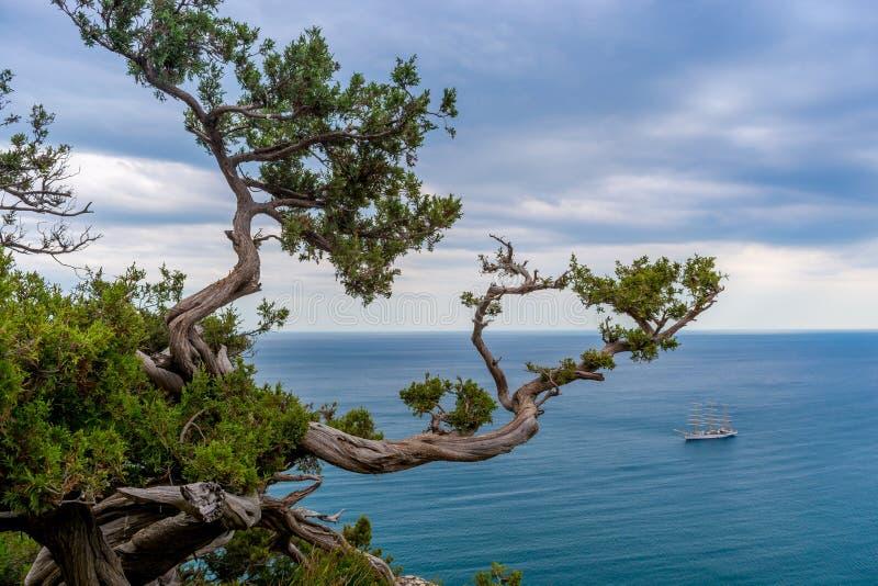 Парусник в заливе моря стоковое фото rf