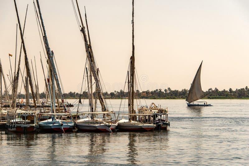 17 05 Парусник felucca 18 Асуан Египет на западном береге Нила стоковые фото
