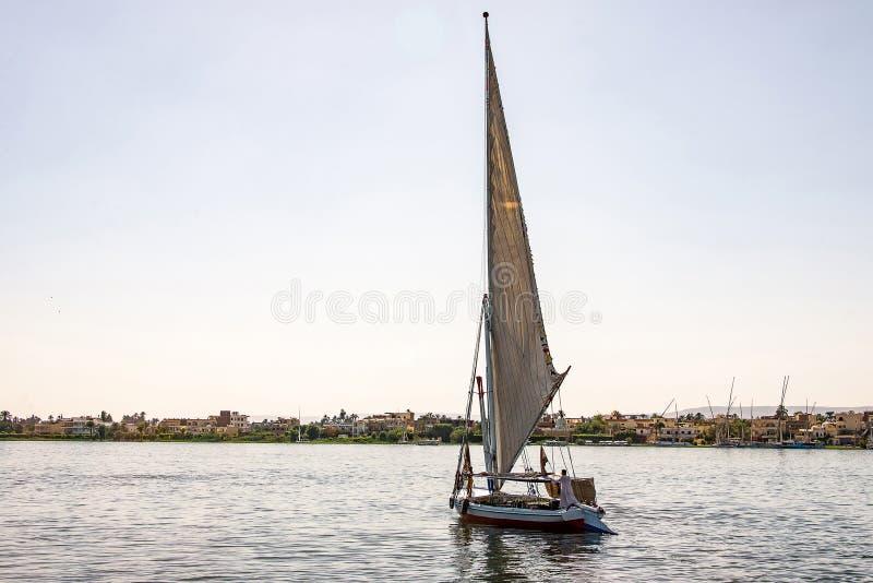 17 05 Парусник felucca 18 Асуан Египет на западном береге Нила стоковая фотография