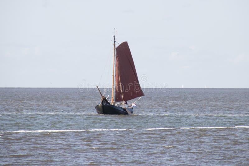 Парусное судно на IJsselmeer стоковые изображения rf
