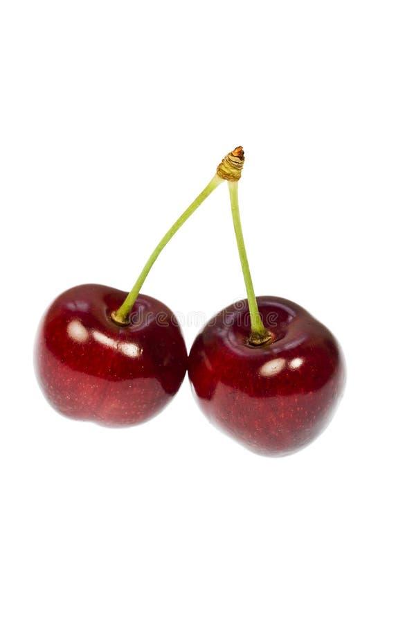 пары вишни стоковые изображения