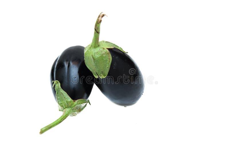 Пары всего фиолетового изолированного aubergine стоковые фото