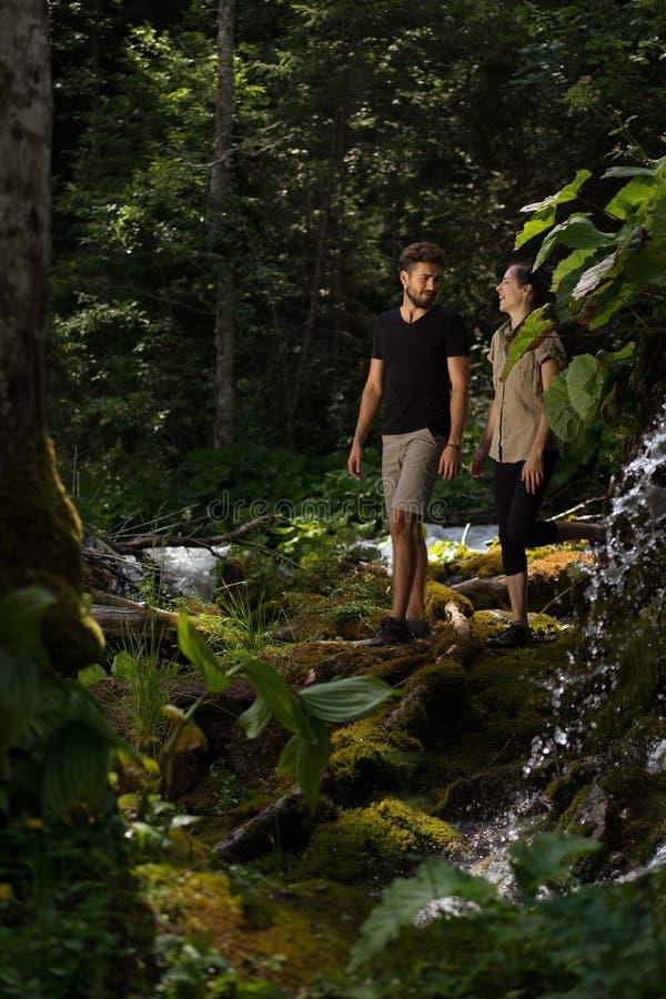 Пары в лесе стоковое изображение rf