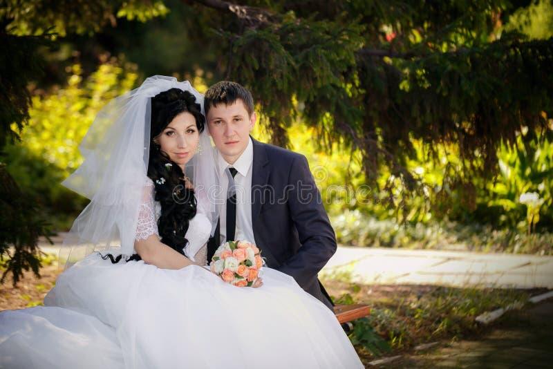 Пары в женихе и невеста влюбленности совместно в bridal летнем дне стоковые изображения rf