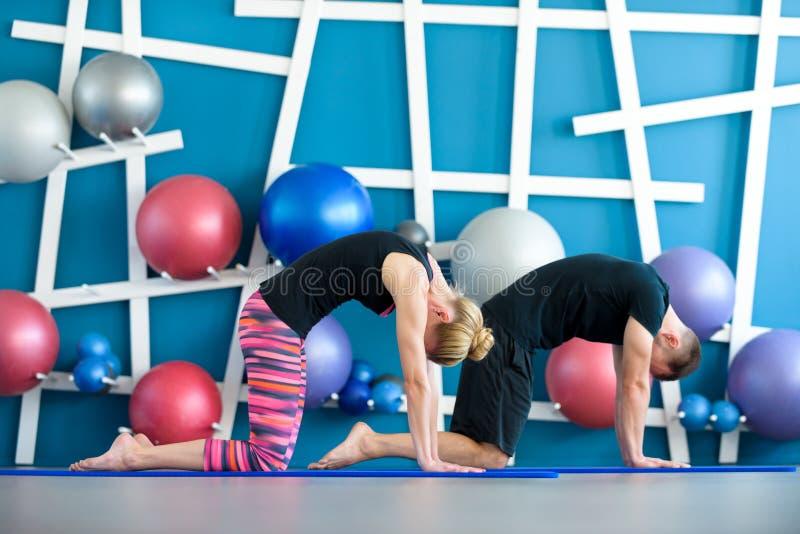 Пары делая йогу в студии Молодые люди в занятиях йогой в представлении кота Концепция группы йоги стоковое фото rf