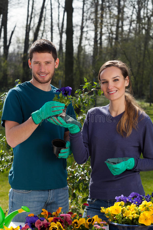 Пары делая работу сада стоковые фото