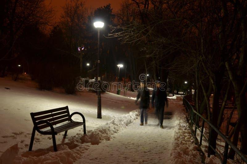 Пары идя на переулок парка в ночи стоковые фотографии rf