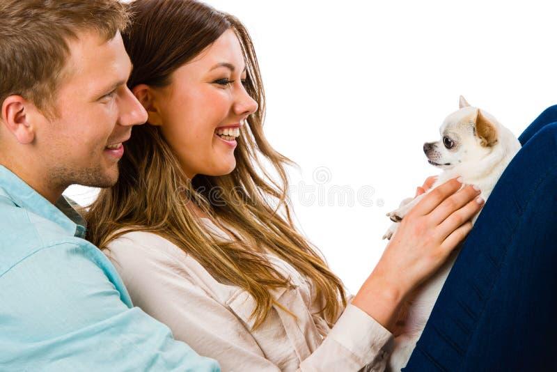 Пары и собака стоковые изображения