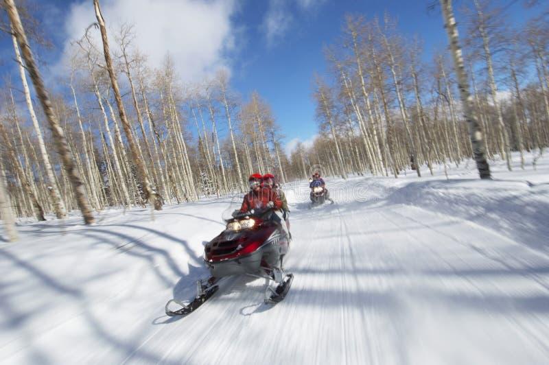 Пары на снегоходе стоковое изображение