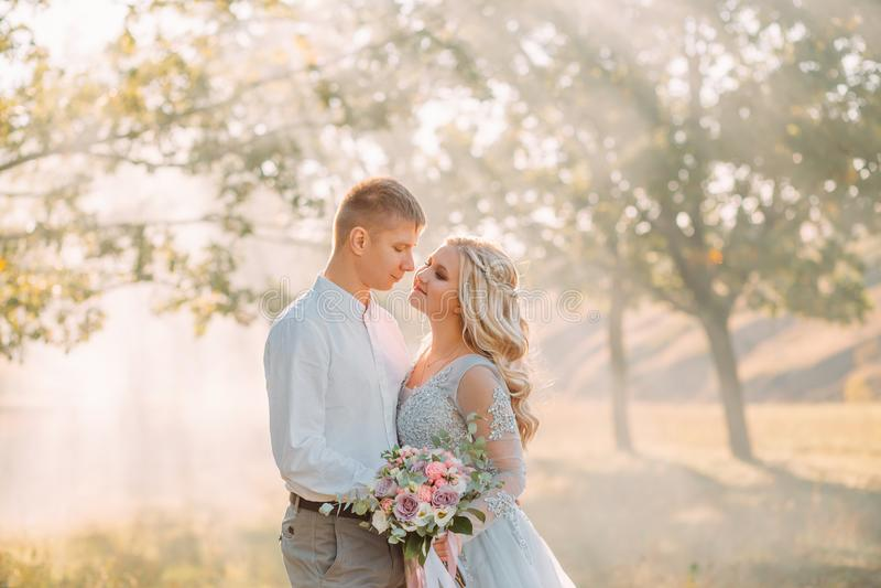 Пары новобрачных в лесе и яркие лучи солнца, холят обнимают его дорогую невесту, девушку с белокурой ярмаркой стоковое изображение rf