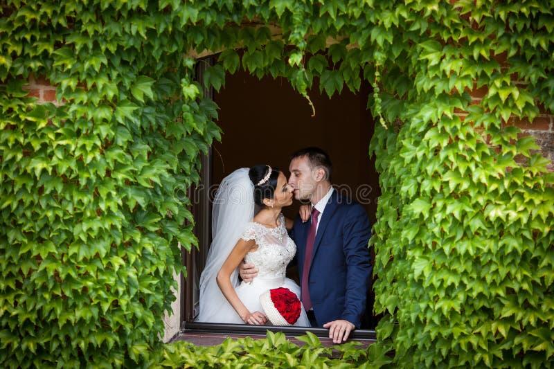 Пары новобрачных сказки романтичные valentynes целуя в n стоковая фотография