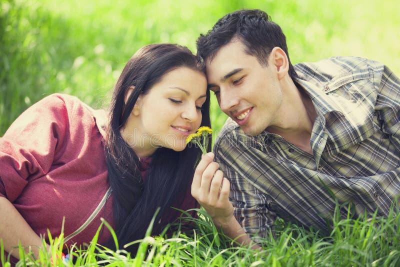 Пары ослабляя на зеленой траве стоковые фото