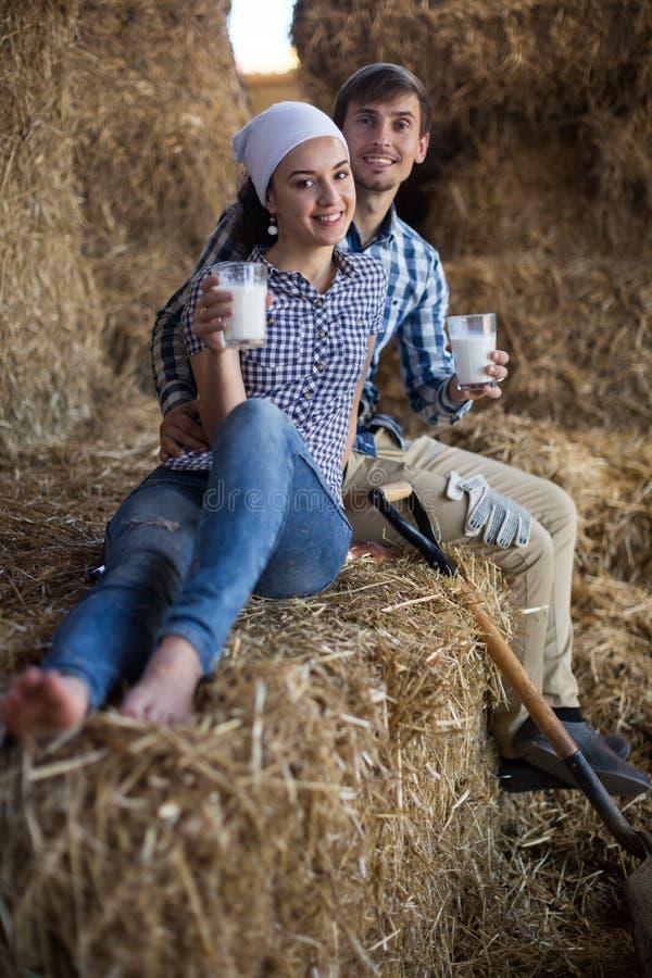 Пары питьевого молока фермеров в сеновале на ферме стоковое фото rf
