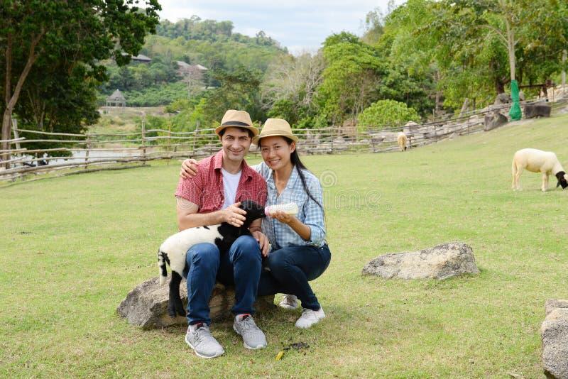 Пары показывая влюбленность и счастливый для того чтобы путешествовать везде стоковое изображение rf
