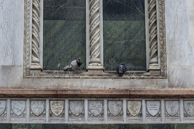Пары птиц голубя на окне romanic мраморного здания церкви стоковое изображение
