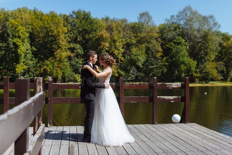 Пары свадьбы обнимая и целуя Очень красивая свадьба изумляя пар стоковое изображение rf