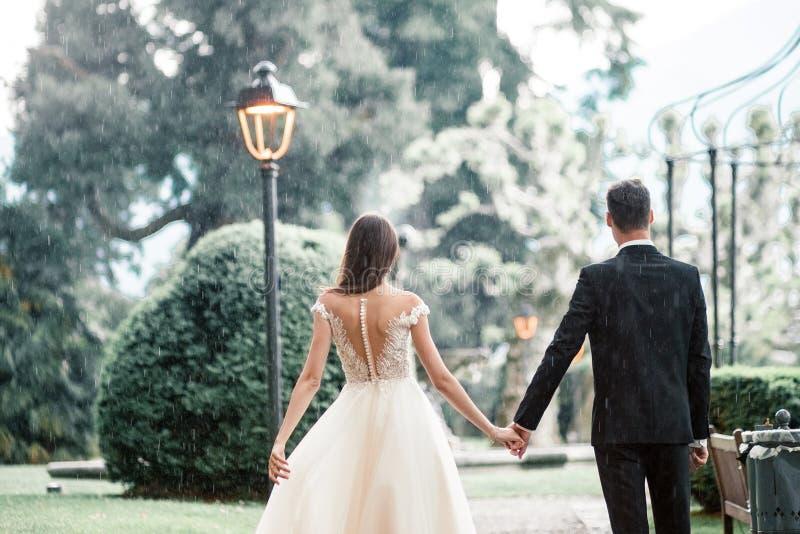 Пары свадьбы целуя в парке под деревом стоковая фотография rf