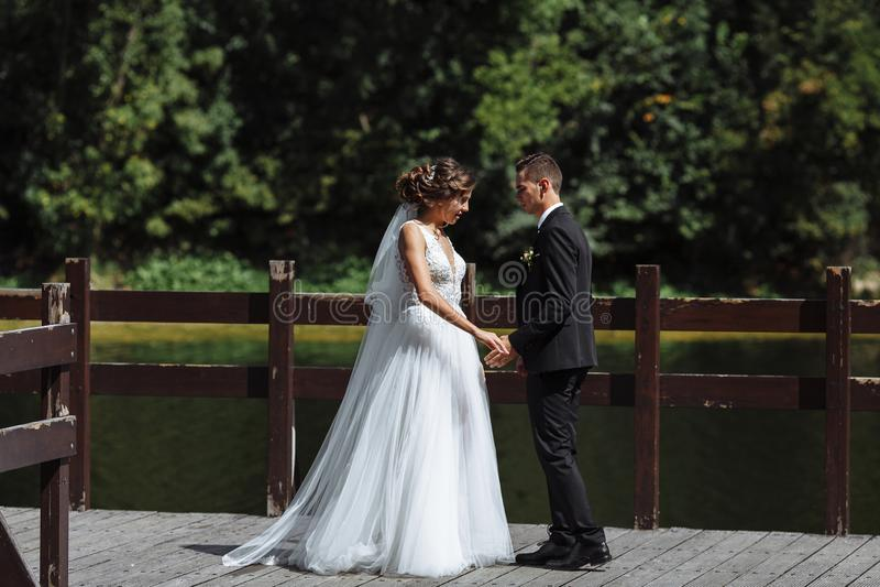 Пары свадьбы Georgeous Свадьба для 2 Милые невеста и стильные холят стоковые фото