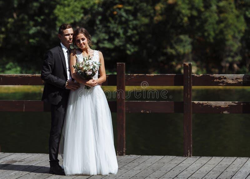 Пары свадьбы Georgeous Свадьба для 2 Милые невеста и стильные холят стоковая фотография rf