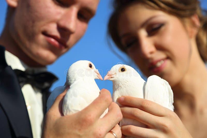 Пары свадьбы с голубями стоковое изображение rf