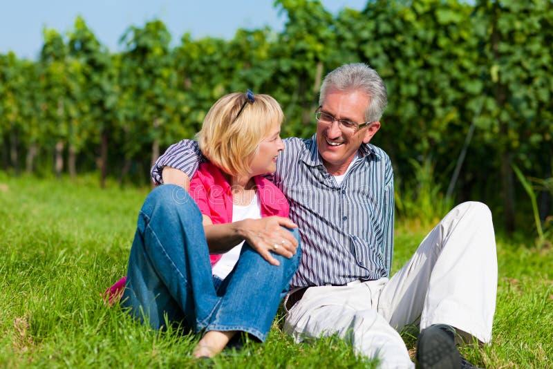 пары счастливые зреют outdoors стоковое изображение rf