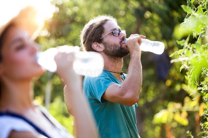 Пары Horticulturist имея перерыв и питьевую воду работы в саде стоковые изображения