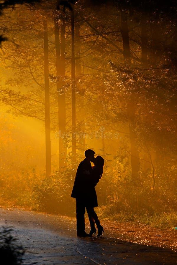 пары kisssing стоковое фото rf