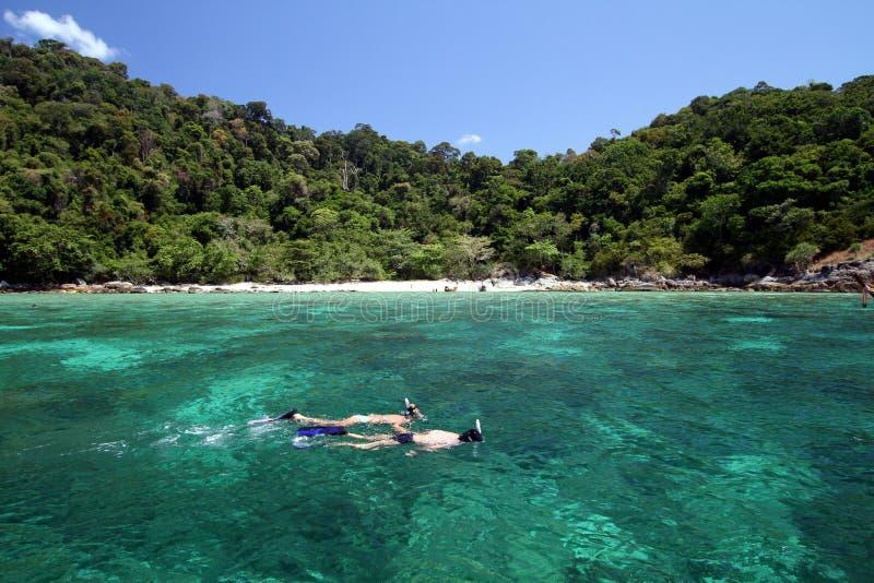 Пары snorkeling с чистой водой стоковое фото